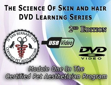 DVD-Learning-series-graphic small