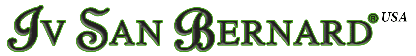 Iv San Bernard USA